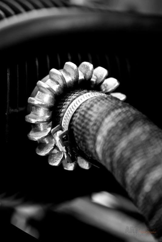 Fabien Artus Photographie premiere vente pour Nad 11
